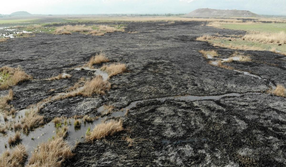 Erzincan'da kuş cennetinde gece çıkan yangın tamamen söndü / Güncel Olaylar  haberleri