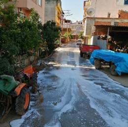 İznik sokakları koronaya karşı dezenfekte ediliyor