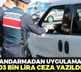 İnegöl'de jandarmadan 103 bin lira ceza