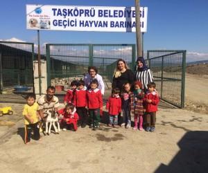 Minik öğrenciler, Geçici Hayvan Barınağı'nı ziyaret etti