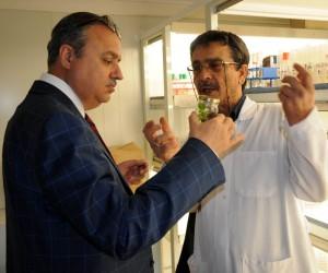 Mersin Valisi Ali İhsan Su Erdemli'de incelemelerde bulundu