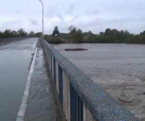 Abhazya'da nehir taştı, Başbakan kurtarma çalışmalarına katıldı