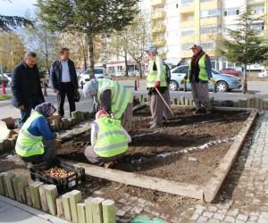 Seydişehir Belediyesi lale, sümbül ve nergis soğan ekimi yaptı