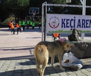 (Özel haber) Hayvan dostu okuldan ilginç turnuva