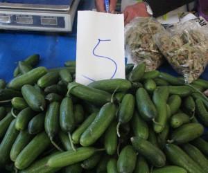 Salatalığın kilosu 5 TL'ye çıktı