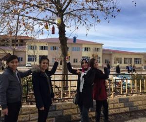 Öğrenciler ağaçlara kuş yuvası bıraktı