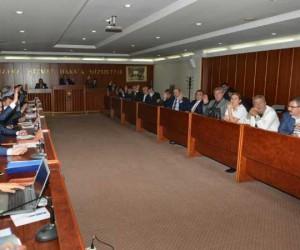 Rüveyde Sapan Meclis Üyeliğini Kabul Etti