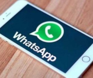 WhatsApp Business yayınlandı