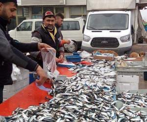 Alabalık ve Palamut'un kilosu 12 liradan satılıyor