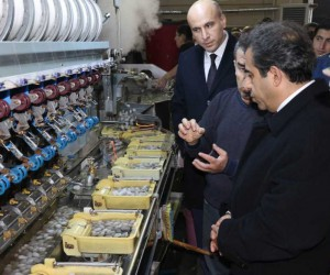 İpek böcekçiliğinde Türkiye üretiminin yarısı Diyarbakır'ın Kulp ilçesinden