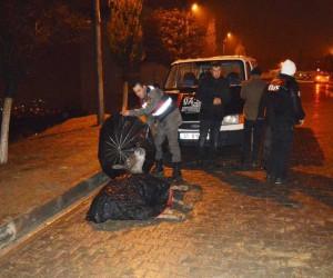 Jandarma, yaralı eşek ıslanmasın diye şemsiyeli tuttu