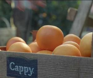 Cappy'nin yeni reklam filmi yayına girdi
