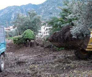 Marmaris Belediyesi bahçe atıklarından gübre üretti