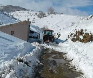 Köy muhtarı karla kaplı yolu traktörle açtı