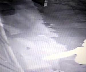 (Özel) PTT şubesinin kapısını tekme ve taşla kıran soyguncu kamerada