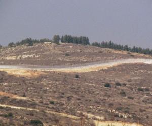 Yoğun çatışmaların ardından Mehmetçik Sakarya Tepesi'ni ele geçirdi
