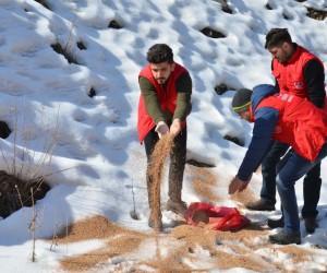 Gençlik liderleri, yaban hayvanları için doğaya yem bıraktı