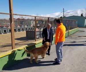 Niğde Belediye Başkanı Özkan Hayvan Barınağını İnceledi