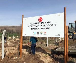 Hani'de Cumhurbaşkanı Erdoğan adına hatıra ormanı oluşturuluyor