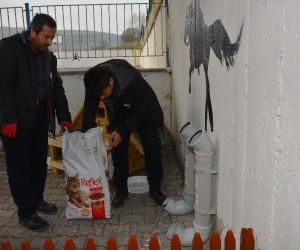 Gaziosmanpaşa Anadolu Lisesi'ne kedi evi