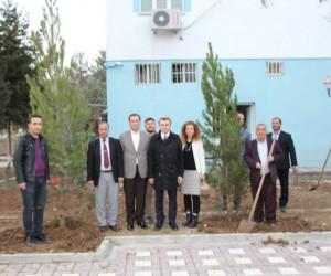 Başkan Yazıcı'dan daha yeşil bir Hani için kampanya