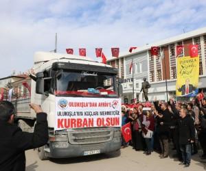 Ulukışla'dan Afrin'deki Mehmetçiğe 90 kurbanlık gönderildi