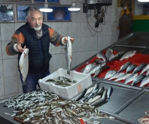 Tezgahta en pahalı balık hamsi