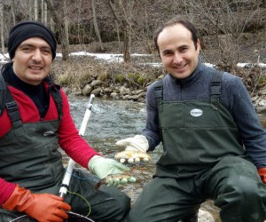 """Yrd. Doç. Dr. Mustafa Akkuş; """"Akarsulara kaçan çiftlik alabalıkları doğal türleri tehdit ediyor"""""""