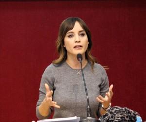 Gazeteci Nazlı Çelik:
