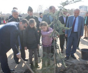 Kaymakamı Girgin, anaokulu öğrencileri ile ağaç dikimi kampanyasına katıldı