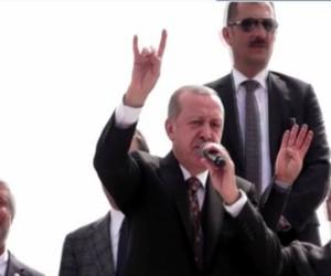 MHP'li İnegöl Belediye meclis üyesinden Bozkurt tepkisi