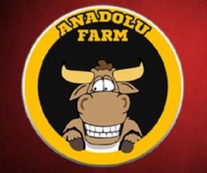 44 bin üyeli Anadolu Farm'a operasyon