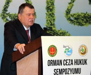 Yargıtay Başkanı Cirit'ten, teröristlerin iade edilmemesine tepki