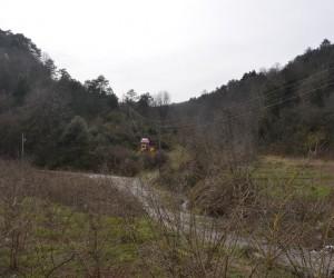 Ormanlık alana kurulan oyun parkı tedirgin ediyor