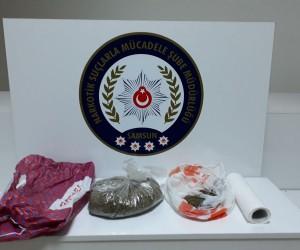 Samsun'da bonzai ticareti yapan 1 şahıs tutuklandı
