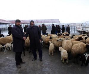 Muradiye'nin ilk mezbahası ve hayvan pazarı hizmete girdi