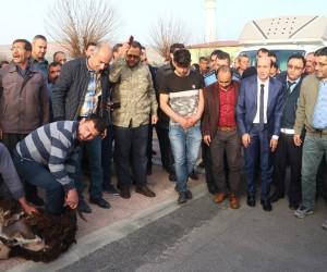 Rüşvet iddiasıyla tutuklanan Spor Kulübü Başkanı Uzun serbest bırakıldı