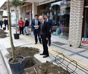 Başkan Kayda, prestij caddesinde ağaç dikti