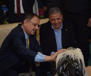 Bakan Özhaseki şampiyonu elleriyle besledi