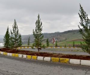 Bağıvar Caddesi ağaçlandırıldı
