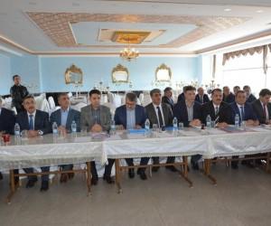 Milletvekili Serdar, Palu'da incelemelerde bulundu