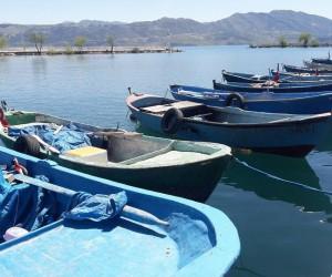 Su ürünlerinde av yasağı başlıyor