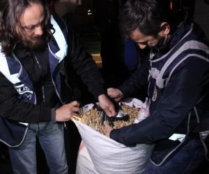 Fıstık çuvallarından 6 bin 300 paket kaçak sigara çıktı