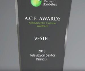 Vestel Müşteri Hizmetleri'ne Mükemmel Müşteri Deneyimi ödülü