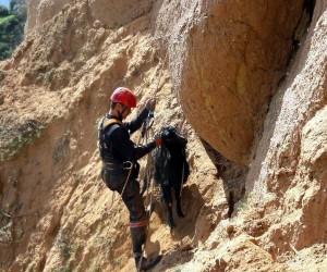 Uçurumda mahsur kalan 2 keçi kurtarıldı