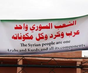 Halep halkı Zeytin Dalı'na ve Guta'ya destek, Esat'a lanet gösterisi yaptı