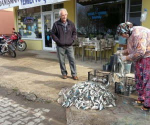 Yasağa bir gün kala gölden balık fışkırdı