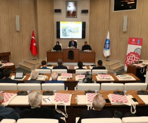 Başkan Remzi Aydın, STK'lara ESTAM'ı anlattı