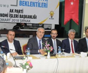 """Şırnak'ta """"Şehirlerin Ekonomik Beklentileri"""" çalıştayı"""