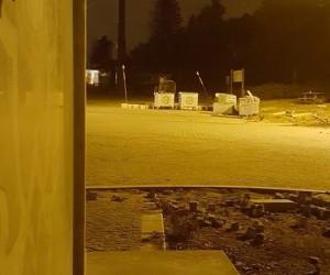 Uludağ'da kış uykusundan uyanan ayı böyle görüntülendi